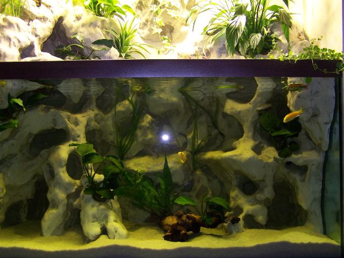 aquaterrarium (34ced) Aqua
