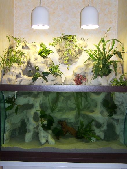 aquaterrarium (34ced) Aqua2